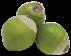 6.-Icono-Coconut.png